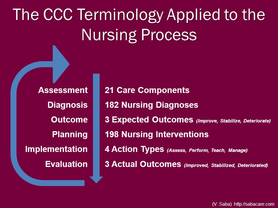 The CCC Terminology Applied to the Nursing Process Assessment Diagnosis Outcome Planning Implementation Evaluation 21 Care Components 182 Nursing Diag