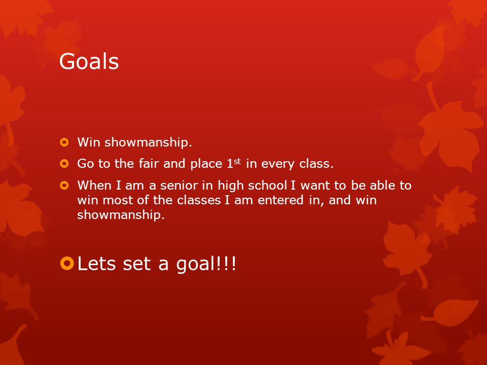 Goals  Win showmanship. Go to the fair and place 1 st in every class.
