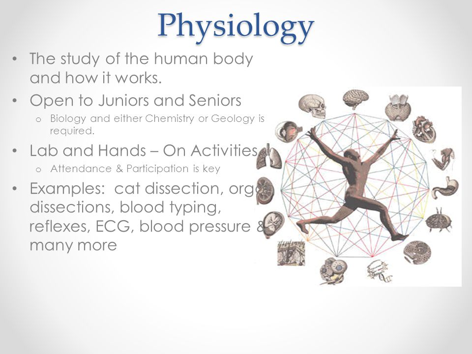 Physiology The study of the human body and how it works. Open to Juniors and Seniors o Biology and either Chemistry or Geology is required. Lab and Ha