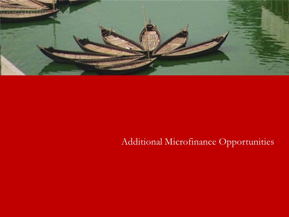 Additional Microfinance Opportunities