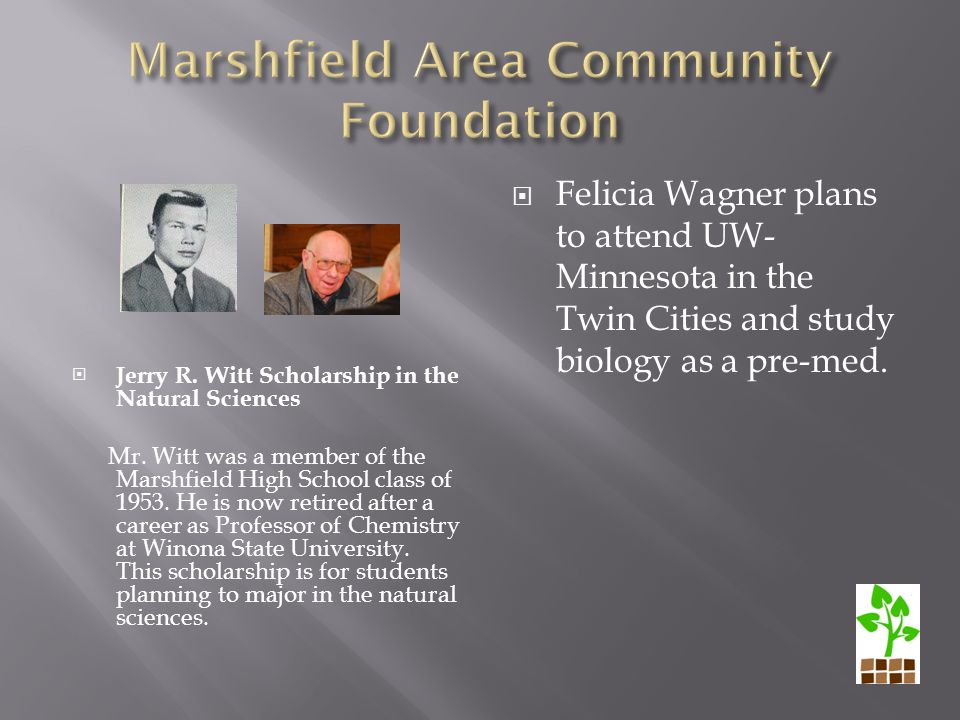  Jerry R. Witt Scholarship in the Natural Sciences Mr.