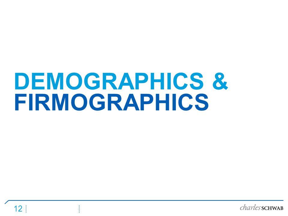12 DEMOGRAPHICS & FIRMOGRAPHICS