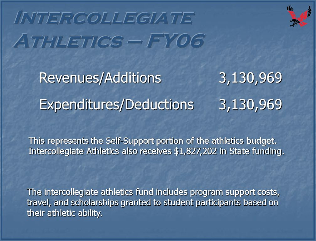 The intercollegiate athletics fund includes program support costs, travel, and scholarships granted to student participants based on their athletic ab
