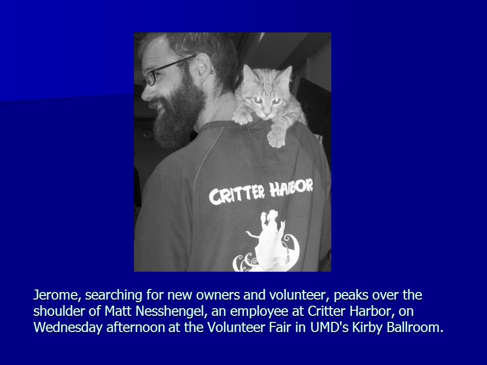 Jerome, searching for new owners and volunteer, peaks over the shoulder of Matt Nesshengel, an employee at Critter Harbor, on Wednesday afternoon at the Volunteer Fair in UMD s Kirby Ballroom.