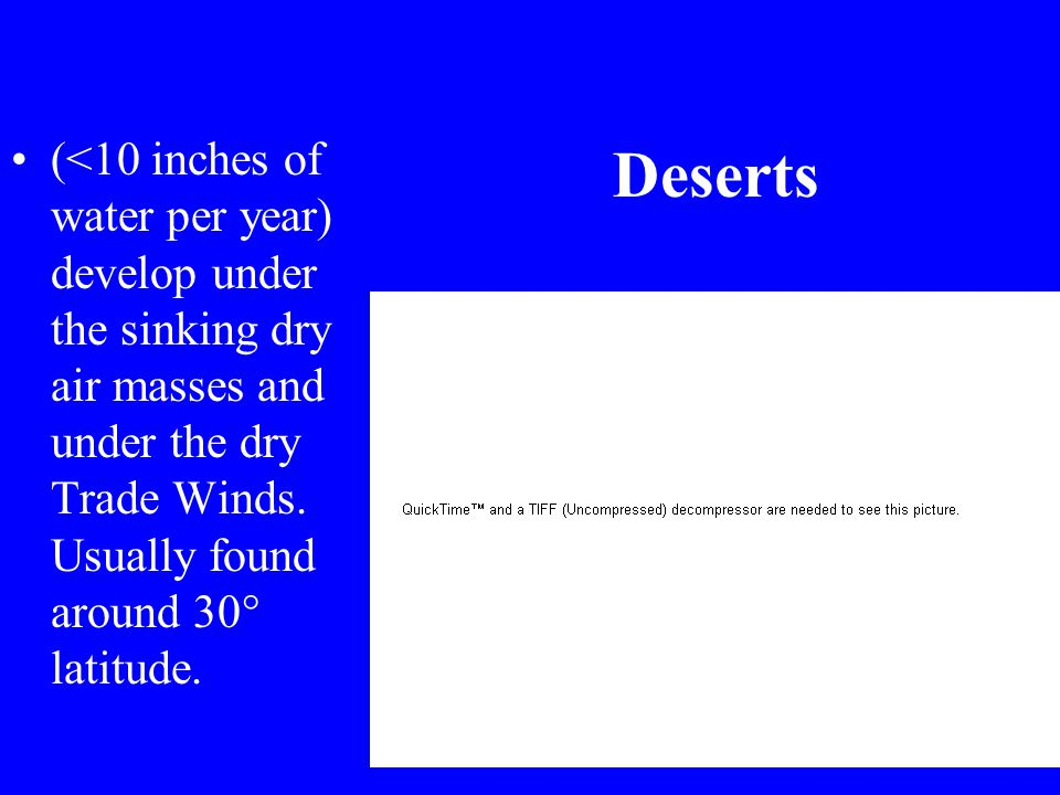 Terrestrial Realm Deserts –Dry trade winds remove moisture –20–30° north and south of the equator –< 25 cm rain/year –Little vegetation Savannah, grasslands –Too dry to support forests