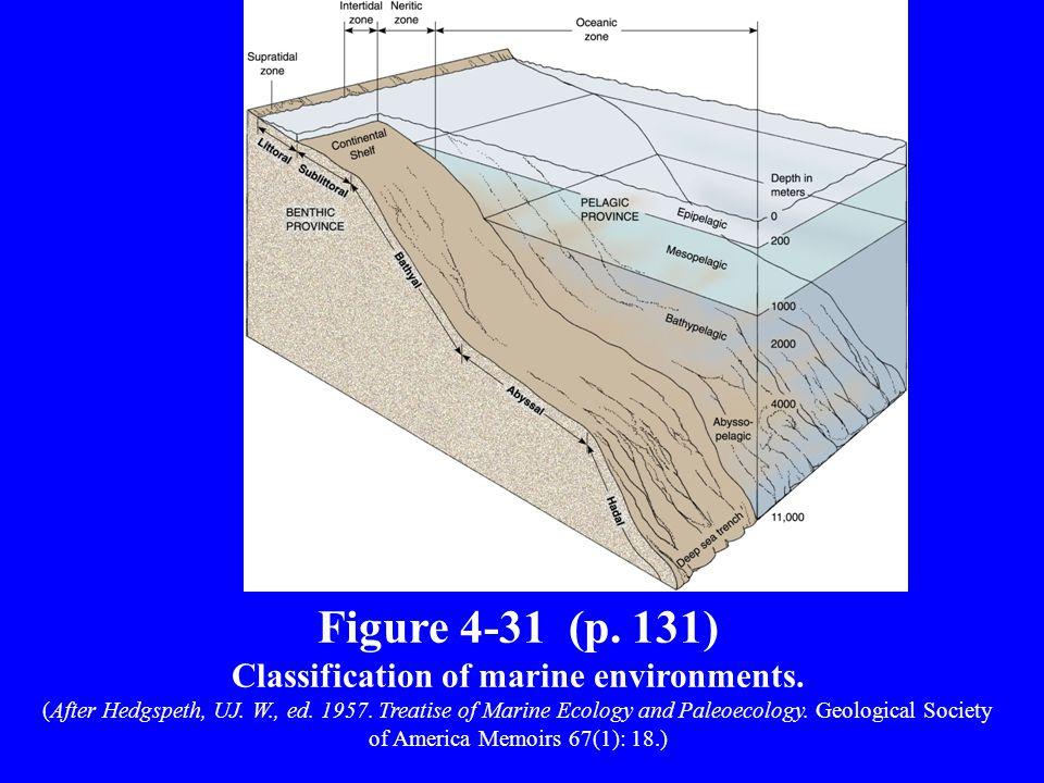 Marine Realm Continental Shelf –Submarine extension of continental landmass Shelf break –Edge of shelf ~200 m w.d.
