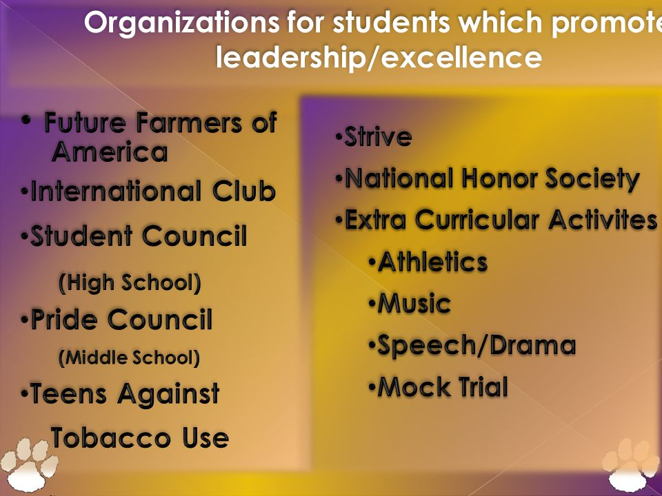 Organizations for students which promote leadership/excellence