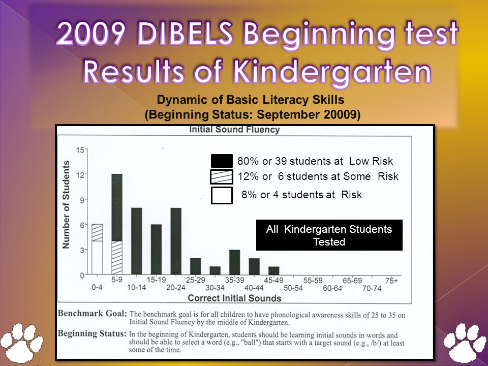 12% or 6 students at Some Risk 80% or 39 students at Low Risk 8% or 4 students at Risk All Kindergarten Students Tested 12% or 6 students at Some Risk