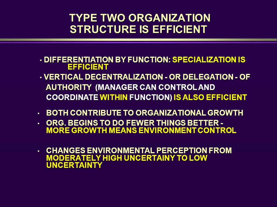 TYPE TWO ORGANIZATION STRUCTURE IS EFFICIENT TYPE TWO ORGANIZATION STRUCTURE IS EFFICIENT BOTH CONTRIBUTE TO ORGANIZATIONAL GROWTH BOTH CONTRIBUTE TO