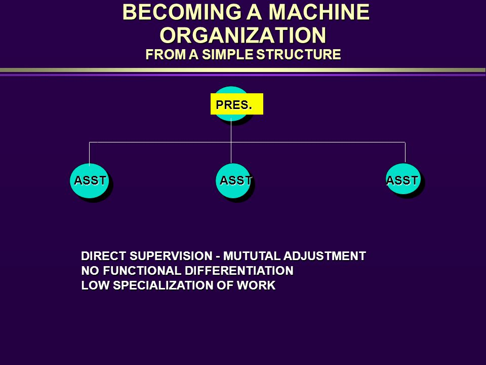 BECOMING A MACHINE ORGANIZATION FROM A SIMPLE STRUCTURE BECOMING A MACHINE ORGANIZATION FROM A SIMPLE STRUCTURE PRES. ASSTASSTASST DIRECT SUPERVISION