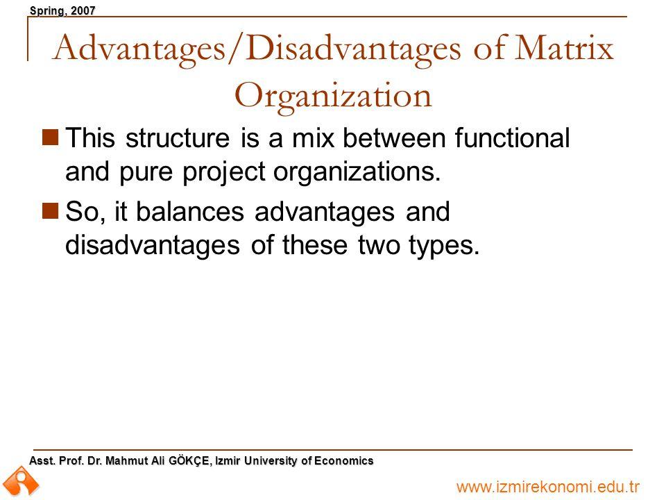 www.izmirekonomi.edu.tr Asst. Prof. Dr. Mahmut Ali GÖKÇE, Izmir University of Economics Spring, 2007 Advantages/Disadvantages of Matrix Organization T