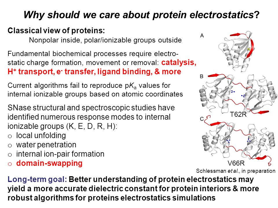 Why should we care about protein electrostatics.