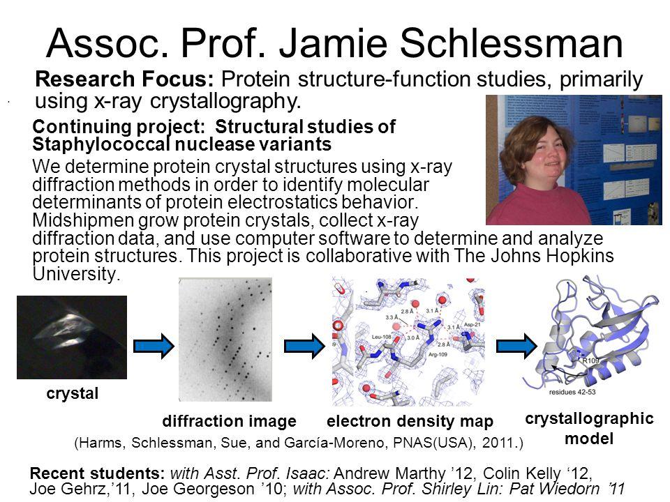Assoc. Prof. Jamie Schlessman.
