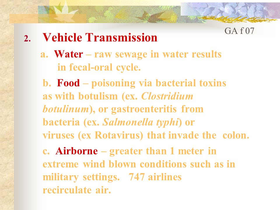 2. Vehicle Transmission a. Water – raw sewage in water results in fecal-oral cycle.