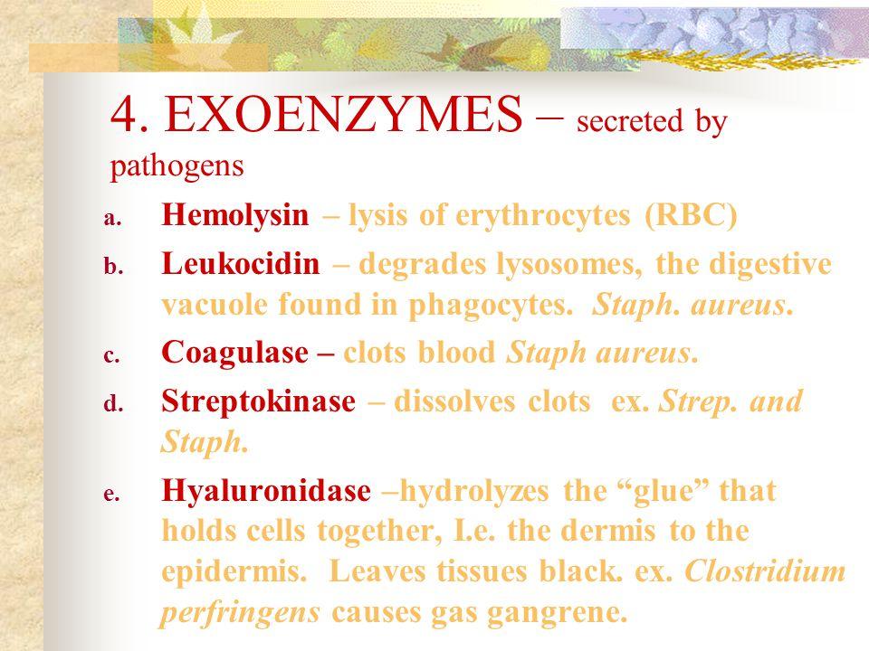 4. EXOENZYMES – secreted by pathogens a. Hemolysin – lysis of erythrocytes (RBC) b. Leukocidin – degrades lysosomes, the digestive vacuole found in ph