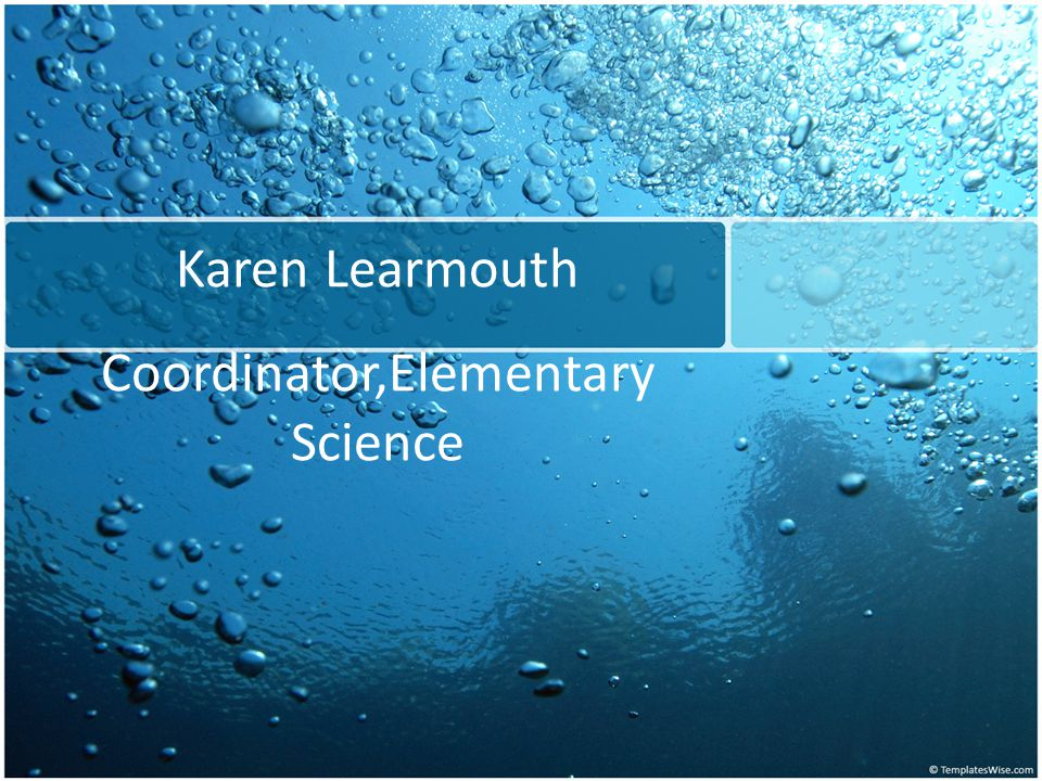 Karen Learmouth Coordinator,Elementary Science