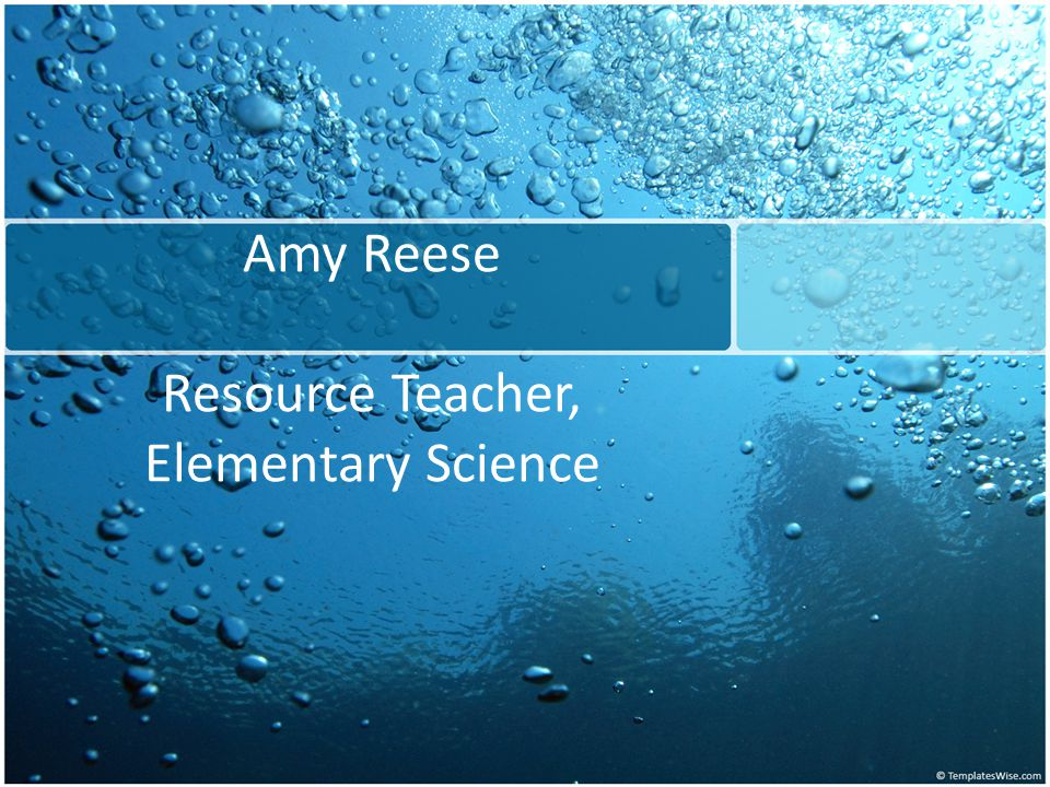 Amy Reese Resource Teacher, Elementary Science