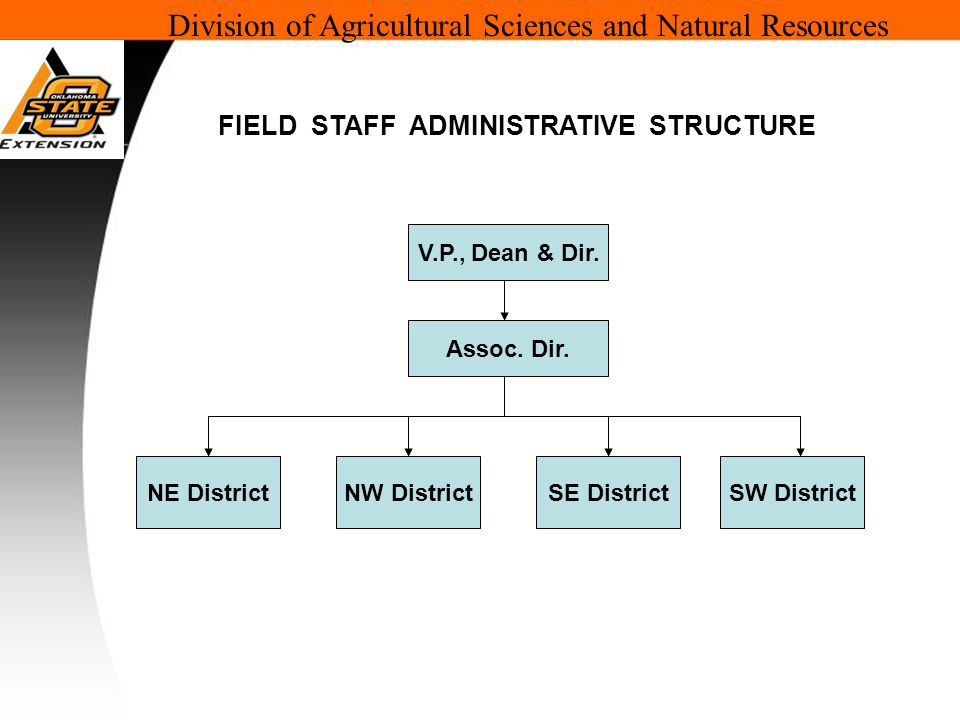 Division of Agricultural Sciences and Natural Resources V.P., Dean & Dir.