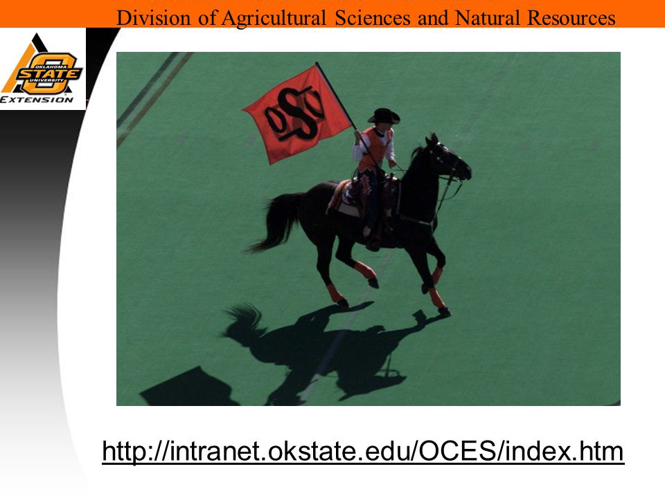 Division of Agricultural Sciences and Natural Resources http://intranet.okstate.edu/OCES/index.htm