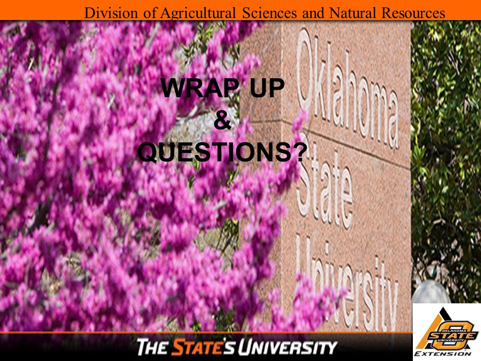 Division of Agricultural Sciences and Natural Resources WRAP UP & QUESTIONS?