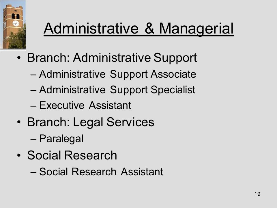 19 Administrative & Managerial Branch: Administrative Support –Administrative Support Associate –Administrative Support Specialist –Executive Assistant Branch: Legal Services –Paralegal Social Research –Social Research Assistant