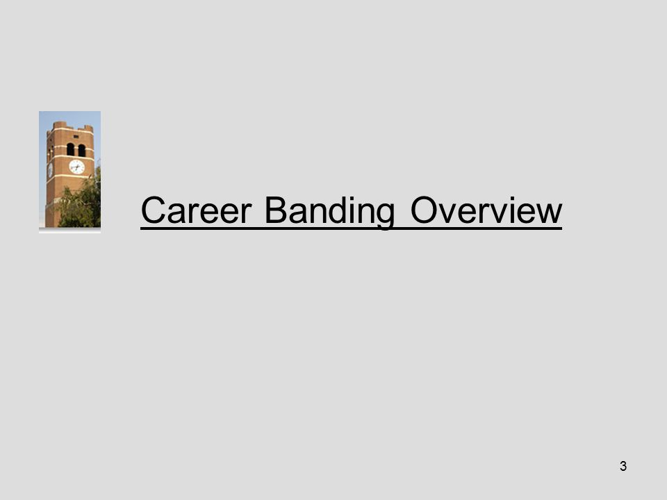 3 Career Banding Overview