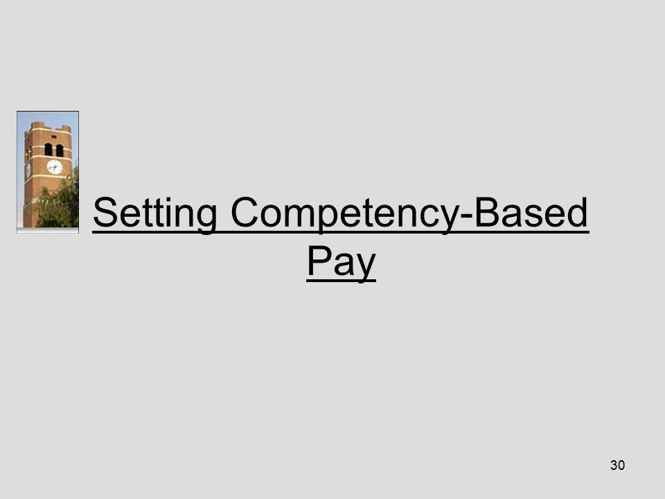 30 Setting Competency-Based Pay