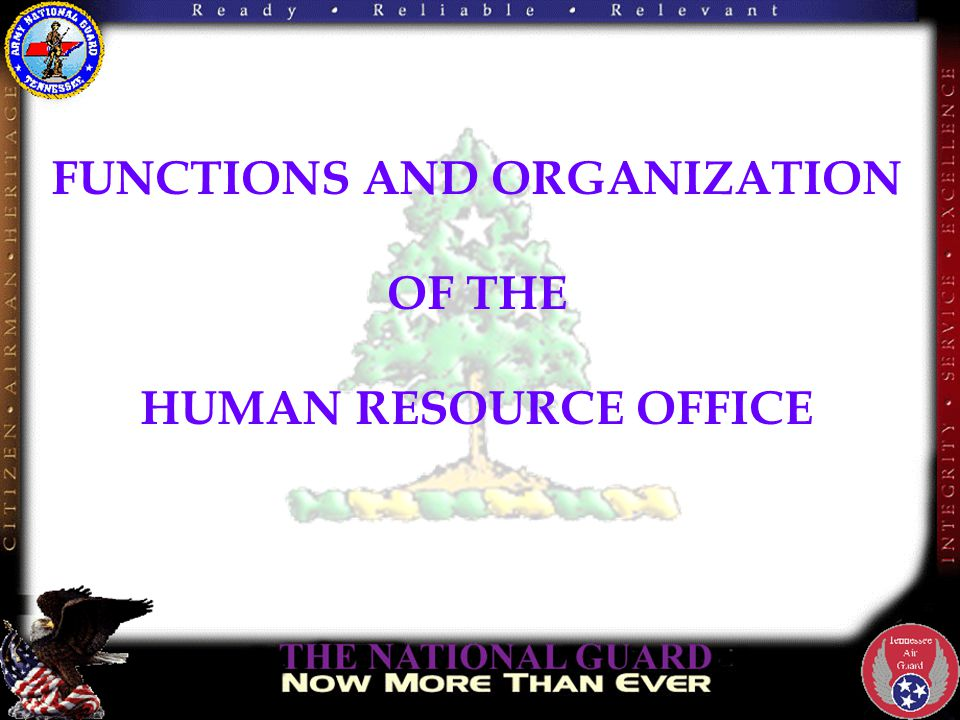 DIRECTOR HUMAN RESOURCES COL WILLIAM BAMM WYNNS COMM: (615) 313-3010 DSN: 683-3010