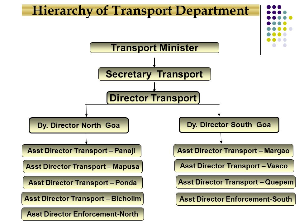 Transport Minister Secretary Transport Director Transport Dy.