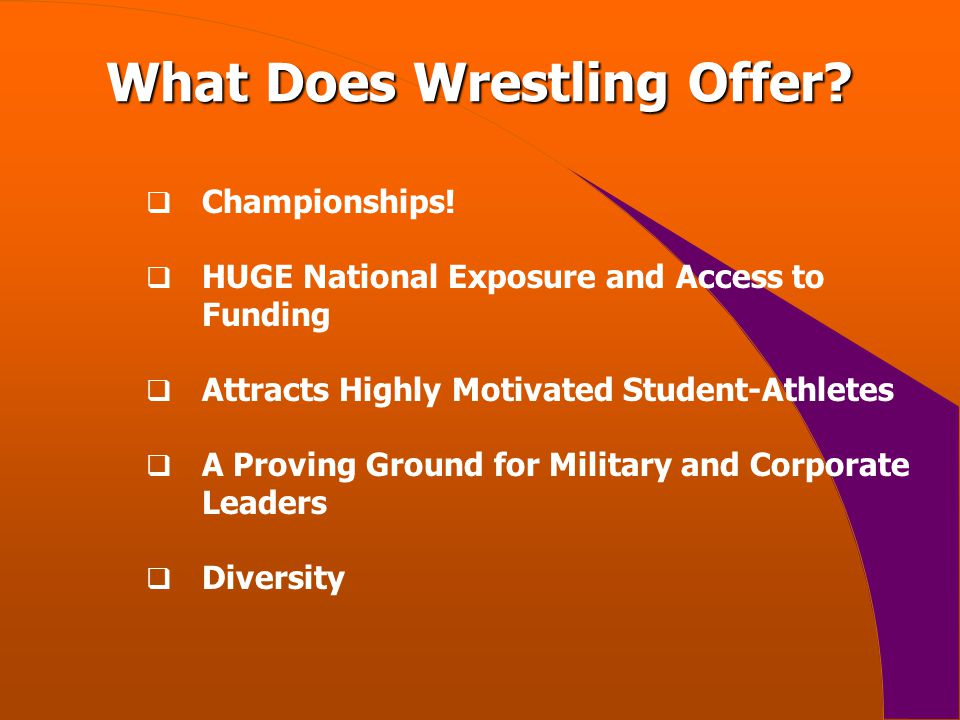 What Does Wrestling Offer.  Championships.