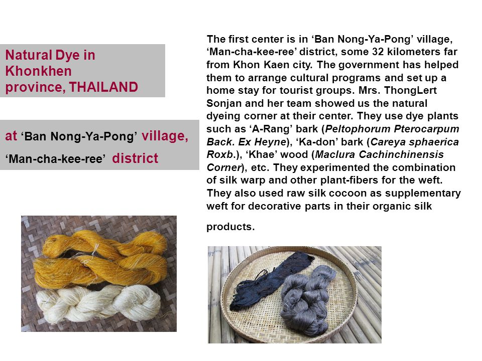Natural Dye in Khonkhen province, THAILAND The first center is in 'Ban Nong-Ya-Pong' village, 'Man-cha-kee-ree' district, some 32 kilometers far from Khon Kaen city.