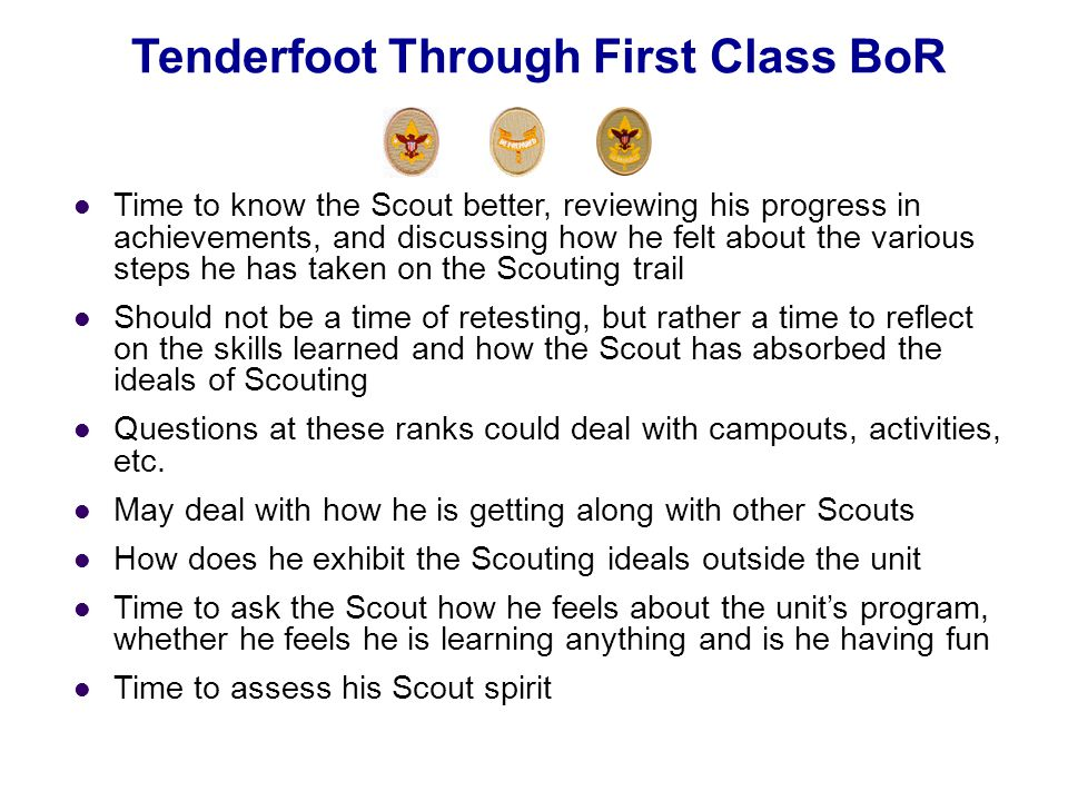 Time to know the Scout better, reviewing his progress in achievements, and discussing how he felt about the various steps he has taken on the Scouting
