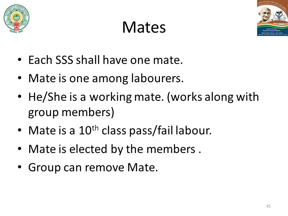 45 Each SSS shall have one mate. Mate is one among labourers. He/She is a working mate. (works along with group members) Mate is a 10 th class pass/fa