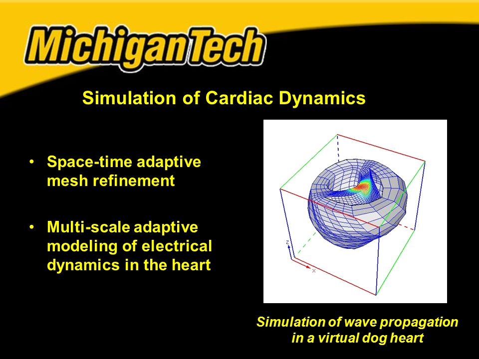 Space-time adaptive mesh refinement Multi-scale adaptive modeling of electrical dynamics in the heart Simulation of Cardiac Dynamics Simulation of wave propagation in a virtual dog heart