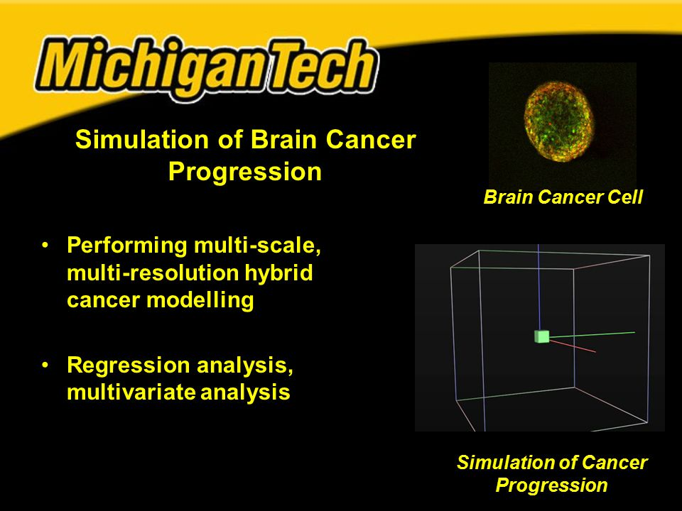 Simulation of Brain Cancer Progression Performing multi-scale, multi-resolution hybrid cancer modelling Regression analysis, multivariate analysis Brain Cancer Cell Simulation of Cancer Progression
