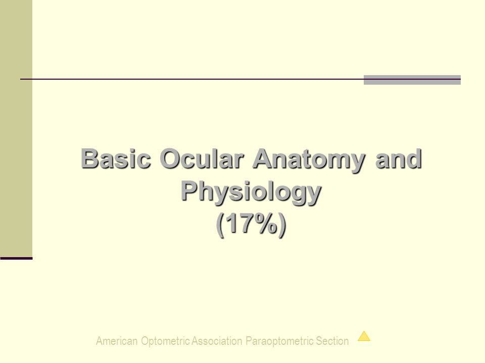 American Optometric Association Paraoptometric Section Basic Ocular Anatomy and Physiology (17%)