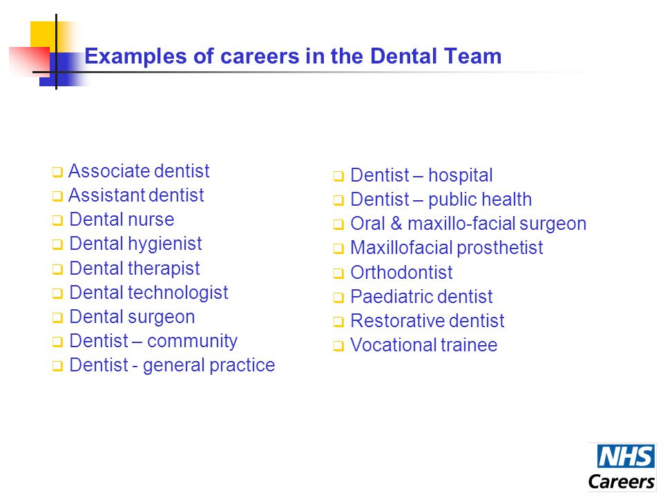 Examples of careers in the Dental Team  Associate dentist  Assistant dentist  Dental nurse  Dental hygienist  Dental therapist  Dental technologist  Dental surgeon  Dentist – community  Dentist - general practice  Dentist – hospital  Dentist – public health  Oral & maxillo-facial surgeon  Maxillofacial prosthetist  Orthodontist  Paediatric dentist  Restorative dentist  Vocational trainee