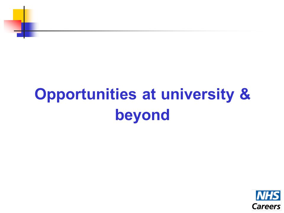 Opportunities at university & beyond