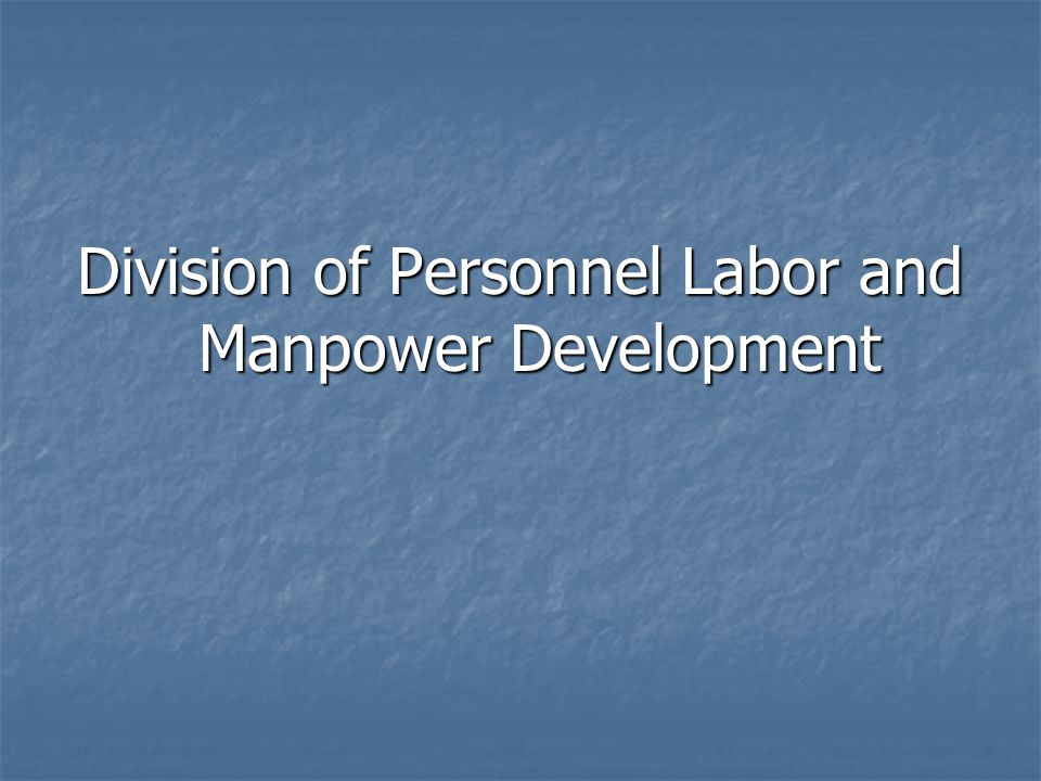 Division of Personnel Labor and Manpower Development