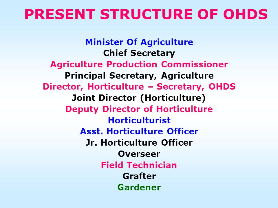 PRESENT STRUCTURE OF OHDS Minister Of Agriculture Chief Secretary Agriculture Production Commissioner Principal Secretary, Agriculture Director, Horticulture – Secretary, OHDS Joint Director (Horticulture) Deputy Director of Horticulture Horticulturist Asst.