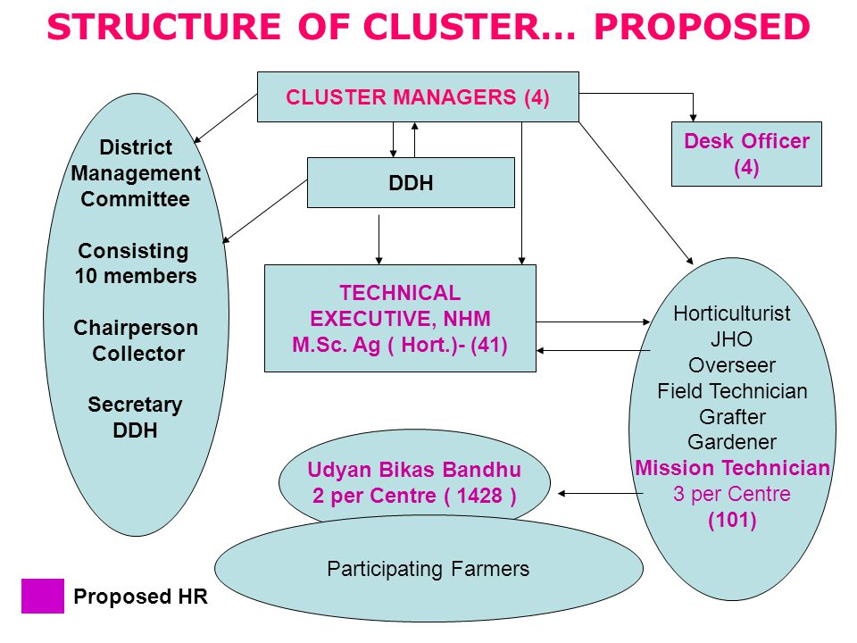 STRUCTURE OF CLUSTER… PROPOSED CLUSTER MANAGERS (4) DDH Desk Officer (4) District Management Committee Consisting 10 members Chairperson Collector Secretary DDH TECHNICAL EXECUTIVE, NHM M.Sc.