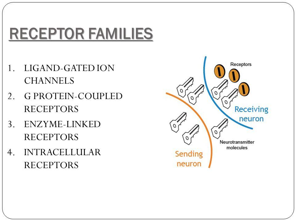 RECEPTOR FAMILIES 1.LIGAND-GATED ION CHANNELS 2.G PROTEIN-COUPLED RECEPTORS 3.ENZYME-LINKED RECEPTORS 4.INTRACELLULAR RECEPTORS