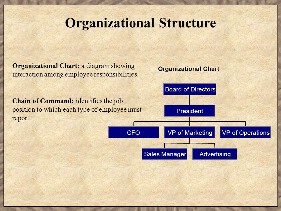 Organizational Structure Organizational Chart CFO Sales ManagerAdvertising VP of MarketingVP of Operations President Board of Directors Chain of Command: identifies the job position to which each type of employee must report.