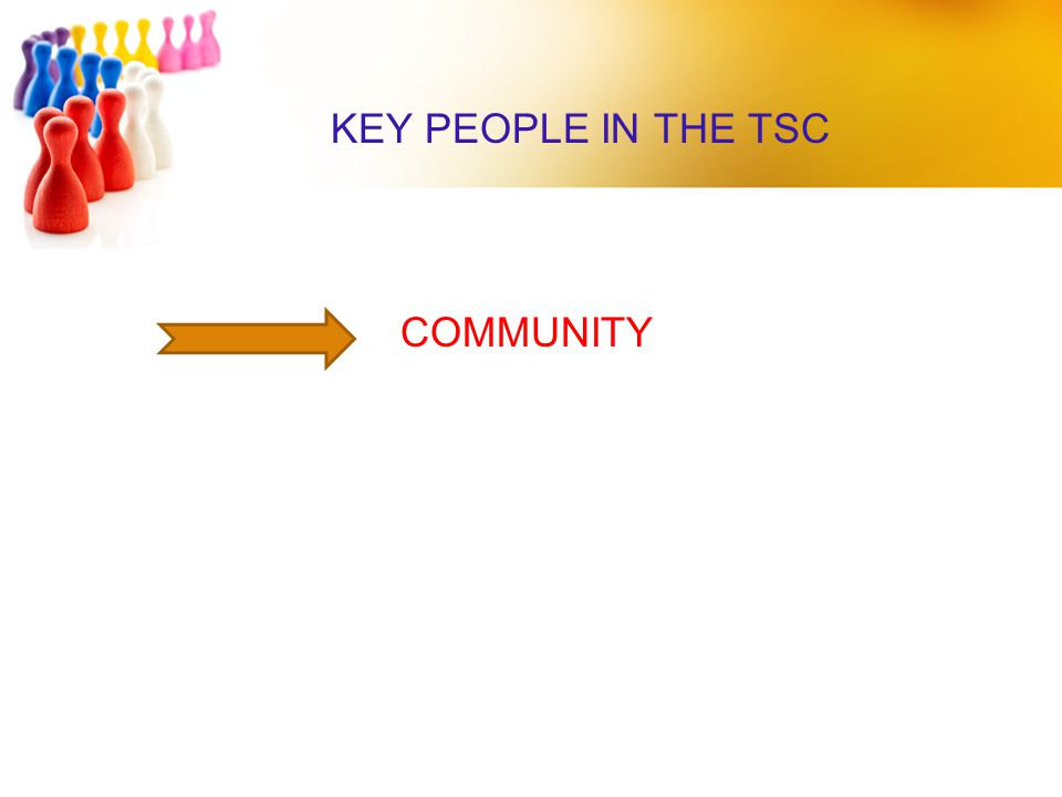 KEY PEOPLE IN THE TSC COMMUNITY