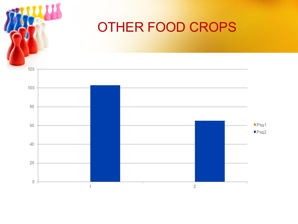 OTHER FOOD CROPS