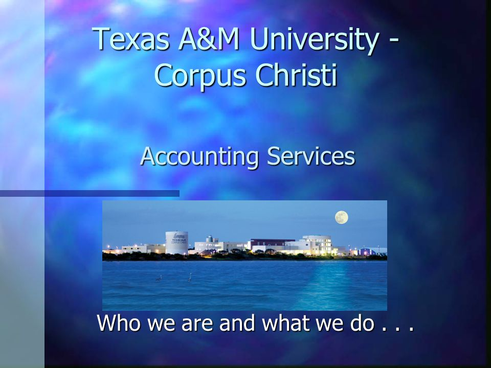 Accounting What We Do... n USAS (Uniform Statewide Accounting System)