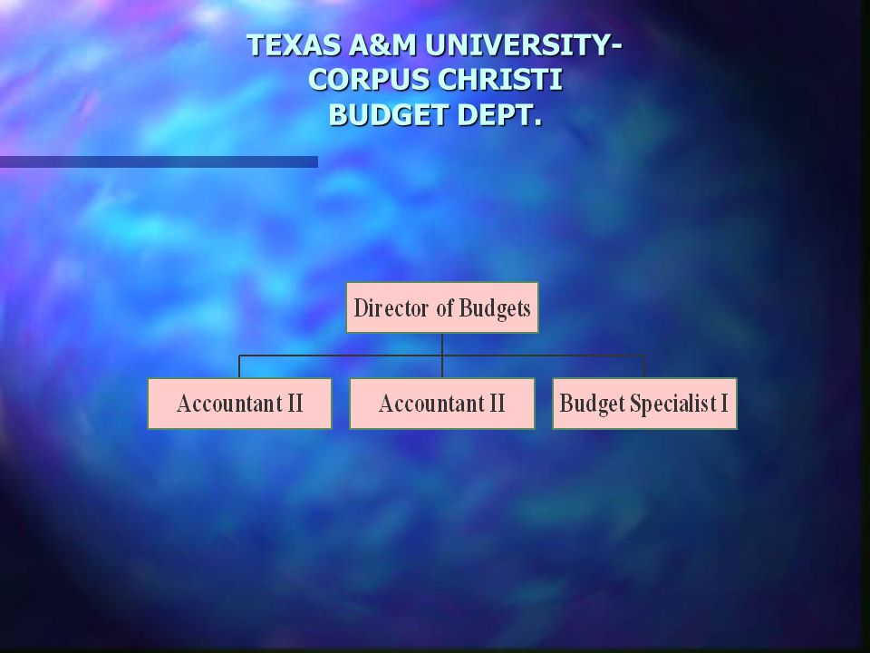 TEXAS A&M UNIVERSITY- CORPUS CHRISTI BUDGET DEPT.