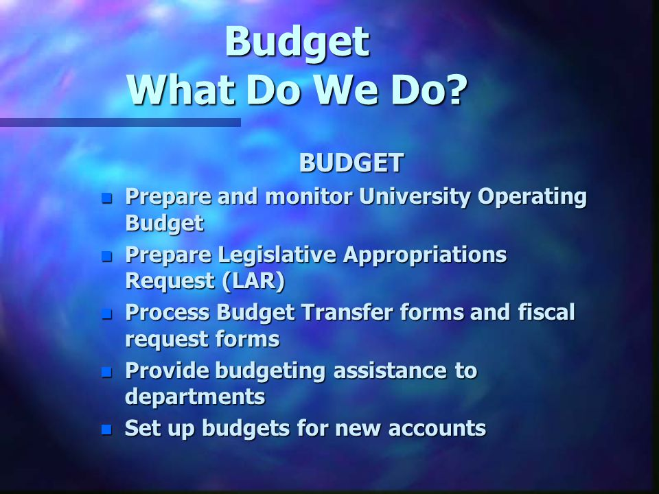 Budget What Do We Do.