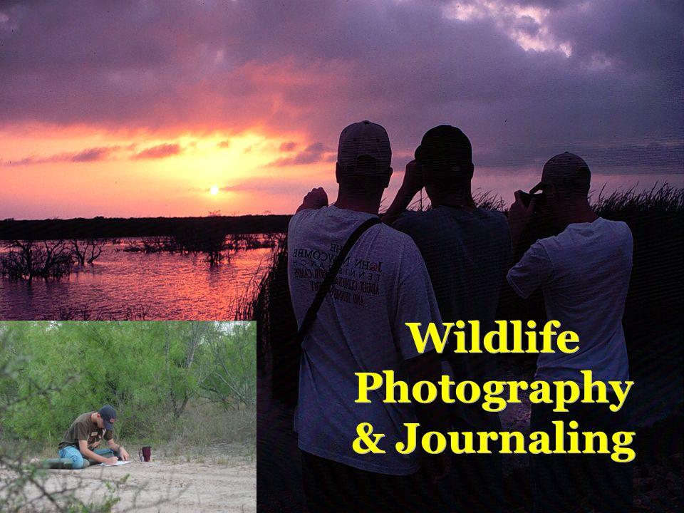 Wildlife Photography & Journaling