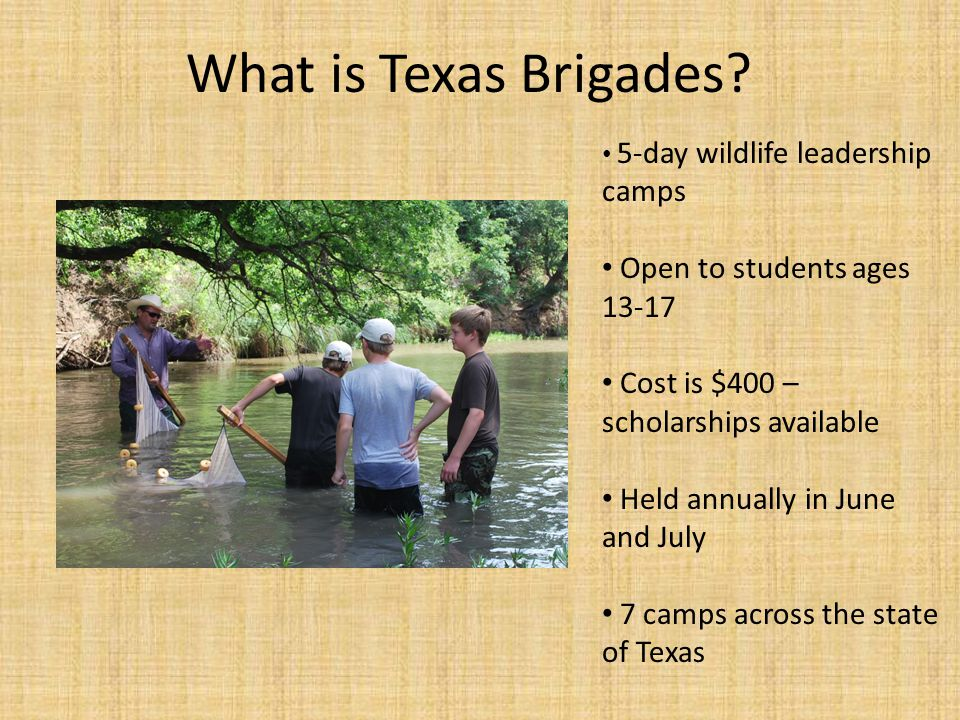 5-day wildlife leadership camps Open to students ages 13-17 Cost is $400 – scholarships available Held annually in June and July 7 camps across the state of Texas What is Texas Brigades?